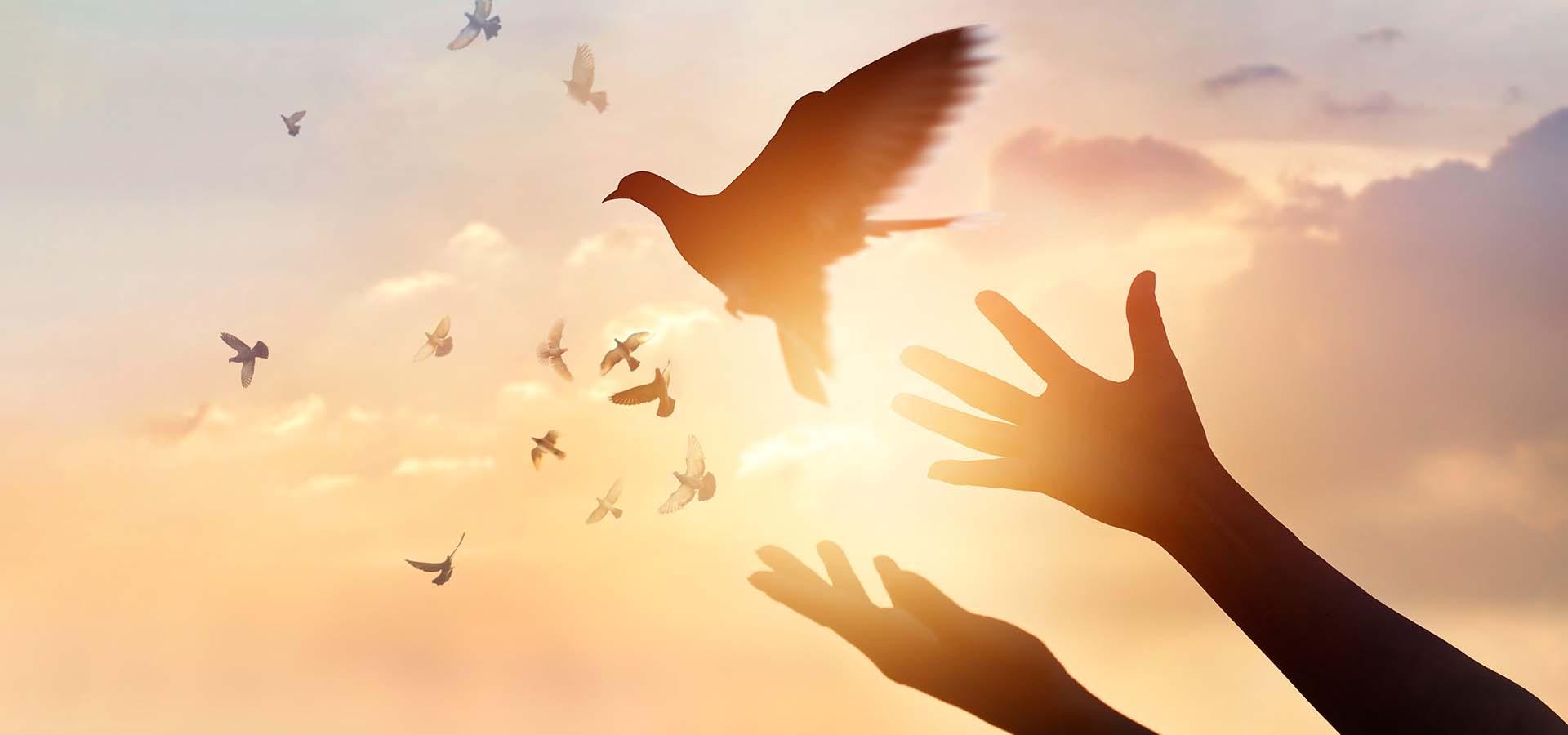 Σεμινάριο Προσωπικής Ανάπτυξης και Εσωτερικής Διδασκαλίας - Απελευθέρωση από τον Φόβο